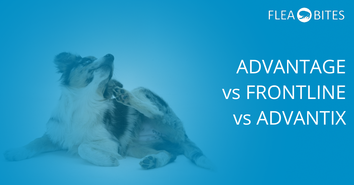 Advantage vs- Advantix vs Frontline Spot-On Treatment