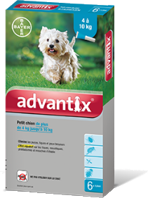 Bayer Advantix for Medium Dogs